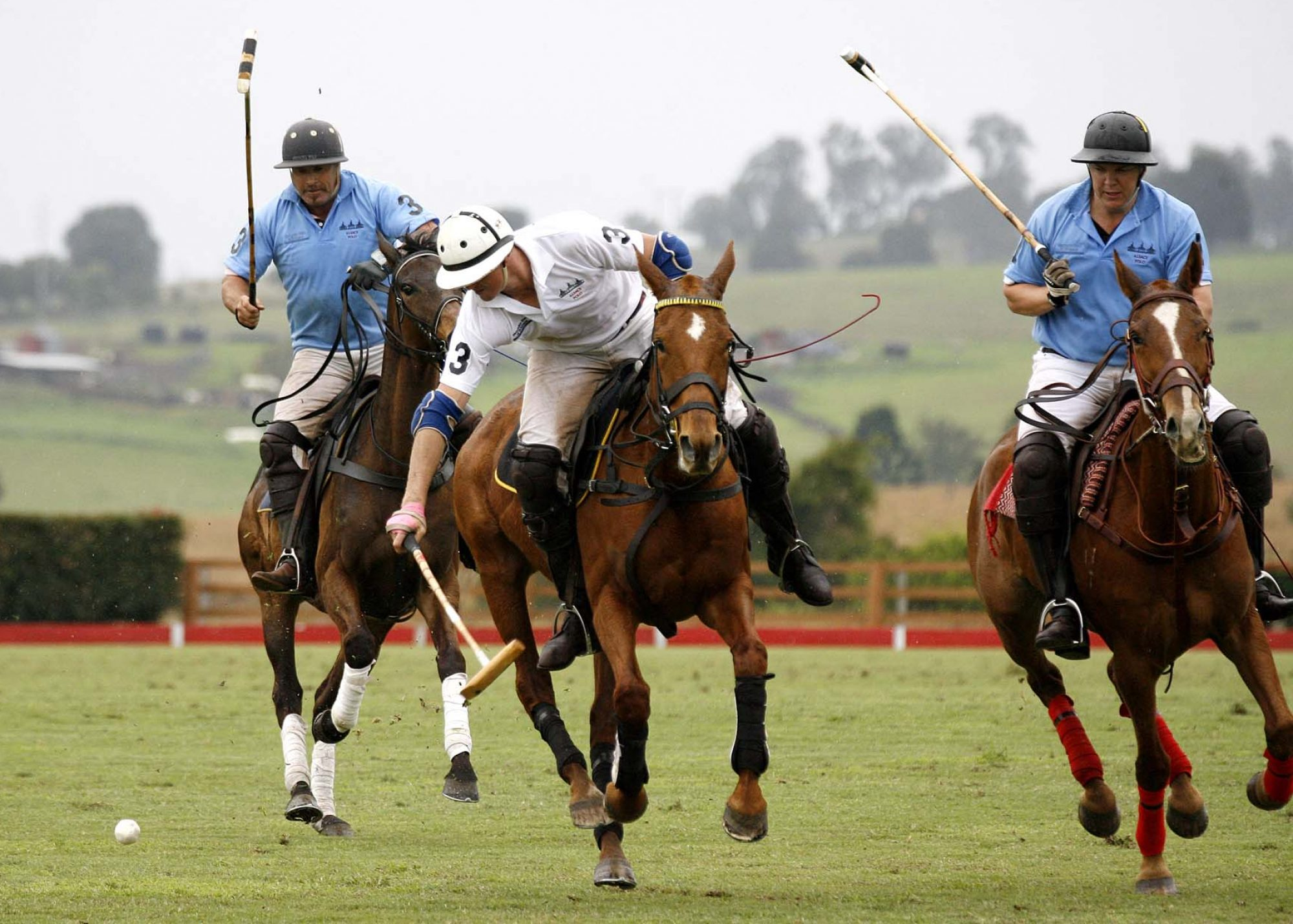 Alsace Polo and Function Venue